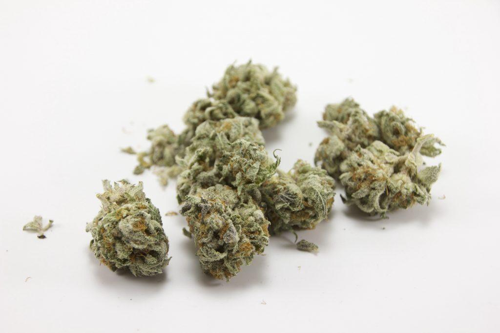 clinical marijuana
